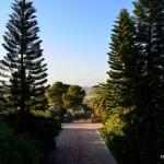 Aussicht in der Klostergarten | Вид на монастырский сад