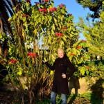 Chrissi unter dem Weihnachtsternchen | Крисси и Цветочек