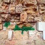 Mauerdetail | Деталь стены