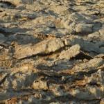 Salzverkrustungen | Соляные корки