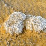 Salz & Sand | Соль и песок