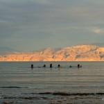 Badende im Toten Meer | Купальщики