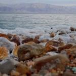 Steinstrand bei En Gedi | Каменный пляж у Айн Геди