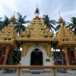 В парке  храма Дхаммикарама | In Park von der Dhammikarama Burmese Buddhist Tempel